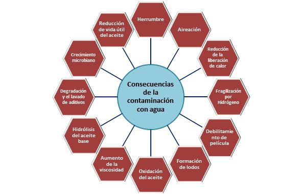 Fig. 1 Consecuencias de la contaminación con agua